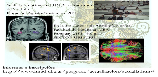 flyer-neuroanatomia-2018-2