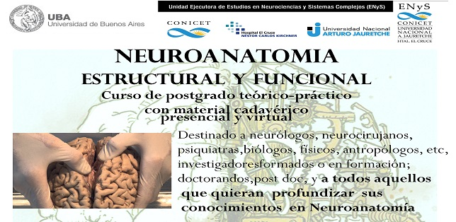 flyer-neuroanatomia-2018